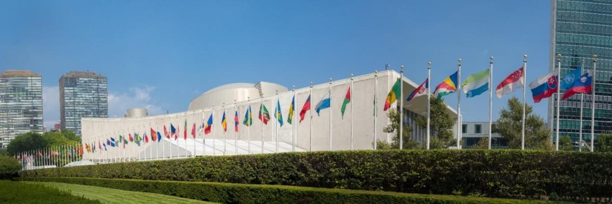 Regional organisations and UN reform: towards Multilateralism 2.0