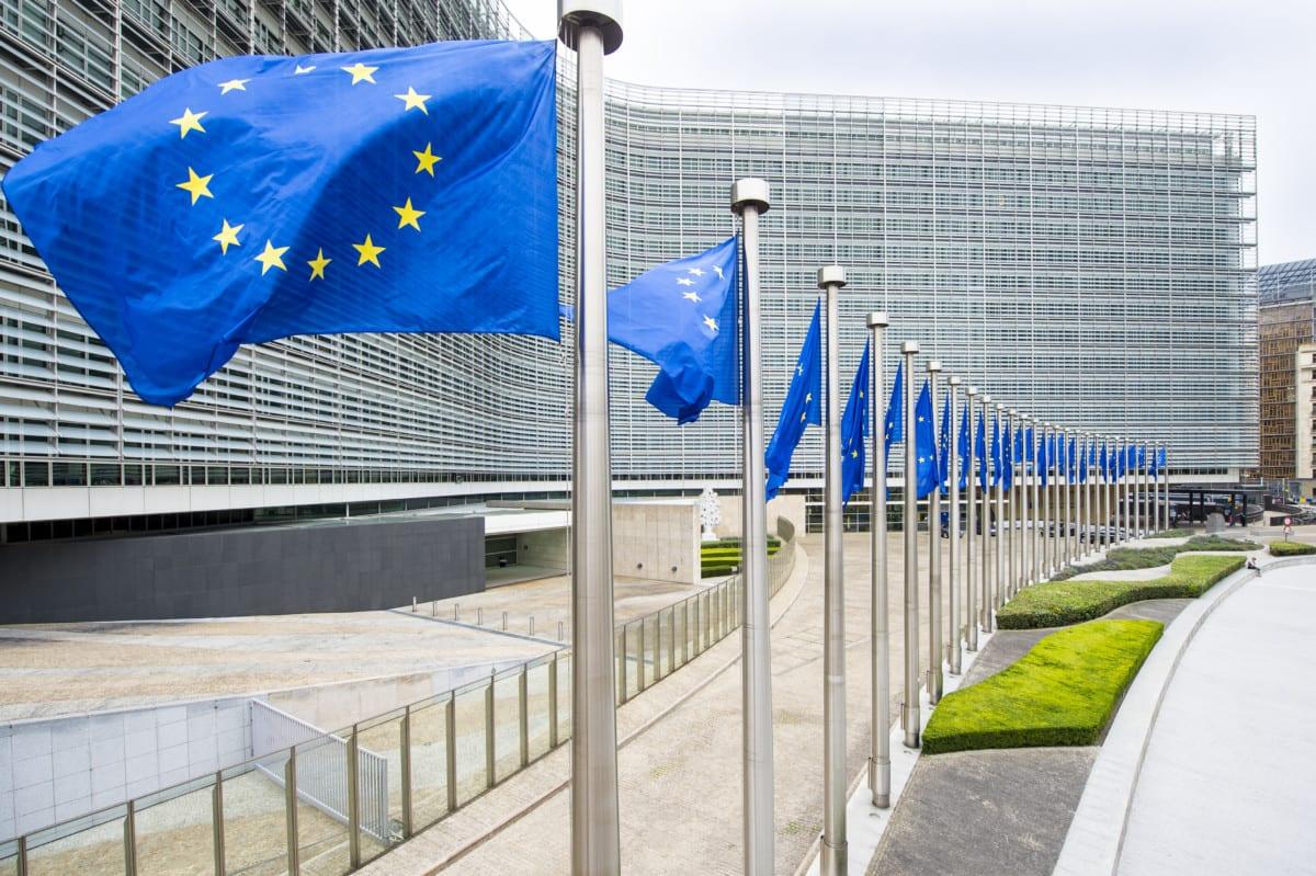2020 EC Work Programme – A metamorphosis should not stop half way!