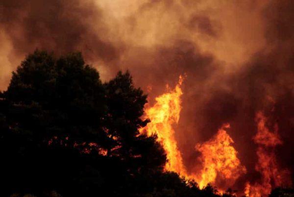 Will the 2018 heatwave reignite the climate change debate?.jpg