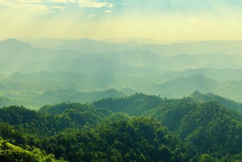Money for nature: bridging the green funding gap